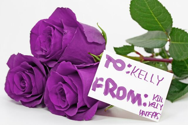 File:Purple Roses.jpg