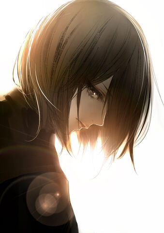 File:Mikasa.Ackerman.full.1484387.jpg