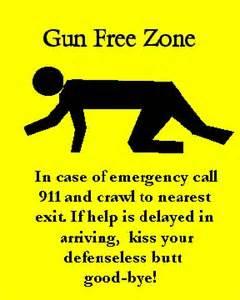 File:GUNFREEZONE.jpg