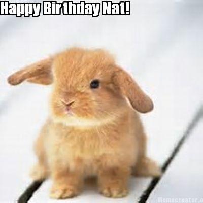 File:Birthday Bunny.jpg
