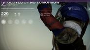 Gloves of No Tomorrow