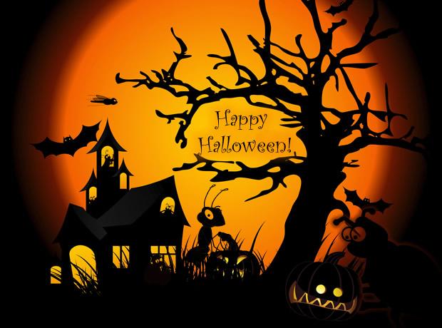 Datei:Halloween.jpg