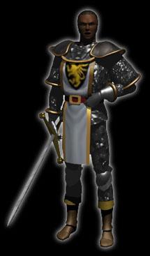 Diablo  Vengeance Paladin Build