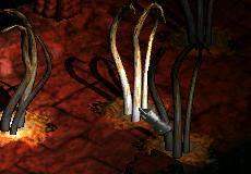 Archivo:Monster Festering Appendage.jpg