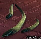 Corpse-worm