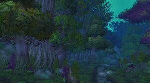 Nachtweisenwald Cata.jpg