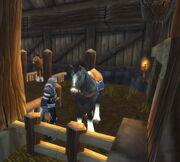 Pferdezucht02.jpg