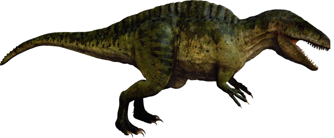 Image result for Acrocanthosaurus Atokensis png