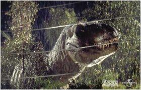 Tyrannosaurus rex catched