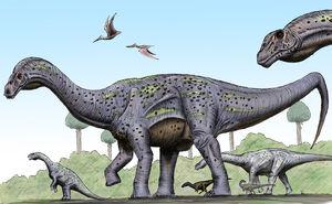 Pitekunsaurus-maniraptora