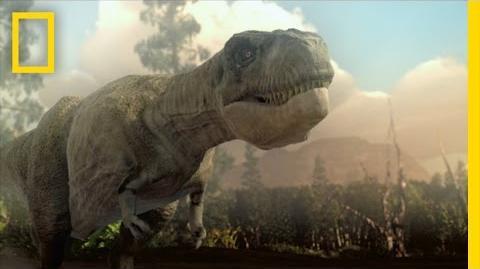Jurassic CSI - Brain vs. Brawn National Geographic