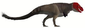 Tyrannosaurus rex mmartyniuk