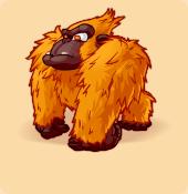 Gorilloz orange