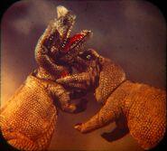 Ceratosaurus vs Ceratosaurus