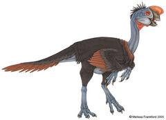 Oviraptor 03.jpg