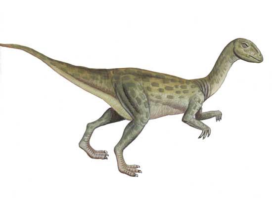 Fulgurotherium dinopedia fandom powered by wikia - Liste de dinosaures ...