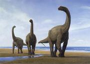 Camarasaurus herd