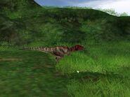 Ceratosaurus 1