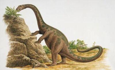 CetiosauriscusGE