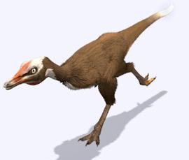 Alvarezsaurus 2
