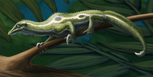 IMG:http://vignette3.wikia.nocookie.net/dinosaurs/images/f/fb/Drepanosaurus.png/revision/latest?cb=20151223162317