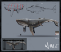 2 concept art whales2.png