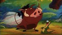 Pumbaa& Pumbaa jr