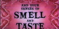 You And Your... Senses Of Smell And Taste