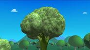 Giant broccoli