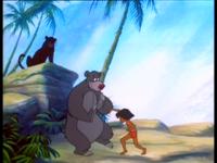 Junglecubsborntobewild (7)