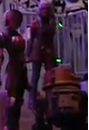 Star wars weekends sabine and chopper