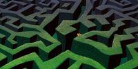 Wonderland Maze