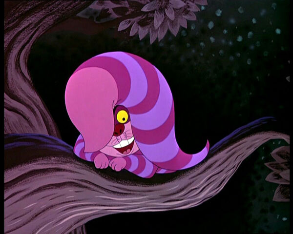 File:Cheshire-cat-6.jpg