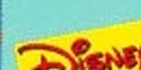 Timon and Pumbaa videography