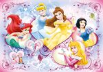 Disney Princess Promotional Art 19