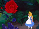 Alice-in-wonderland-disneyscreencaps.com-3036