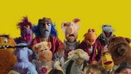 OKGo-Muppets (20)