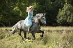 Hr Cinderella 1