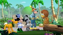 Mickey-Dizz