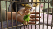 Tinkerbell-great-fairy-rescue-disneyscreencaps com-1954