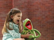 MUPPETMOMENTS Y1 ART 137150 3851