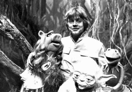 File:MarkHamill-Muppets-Yoda.jpg