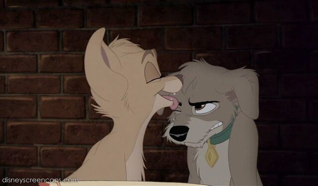 File:Tramp2-disneyscreencaps com-4524.jpg