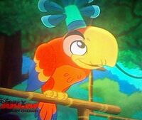 Wise Old Parrot03