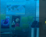 Darla in Finding Dory
