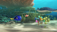 Finding Dory 6