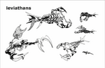 Leviathan-6