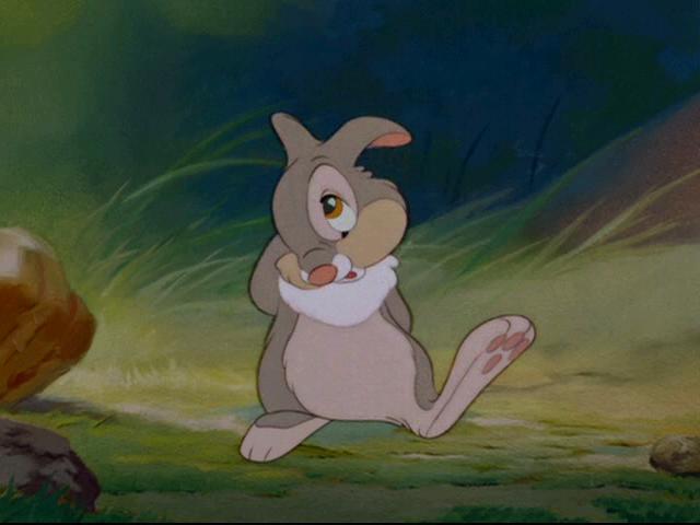 File:Thumper21.jpg