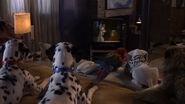 102-dalmatians-disneyscreencaps com-4922