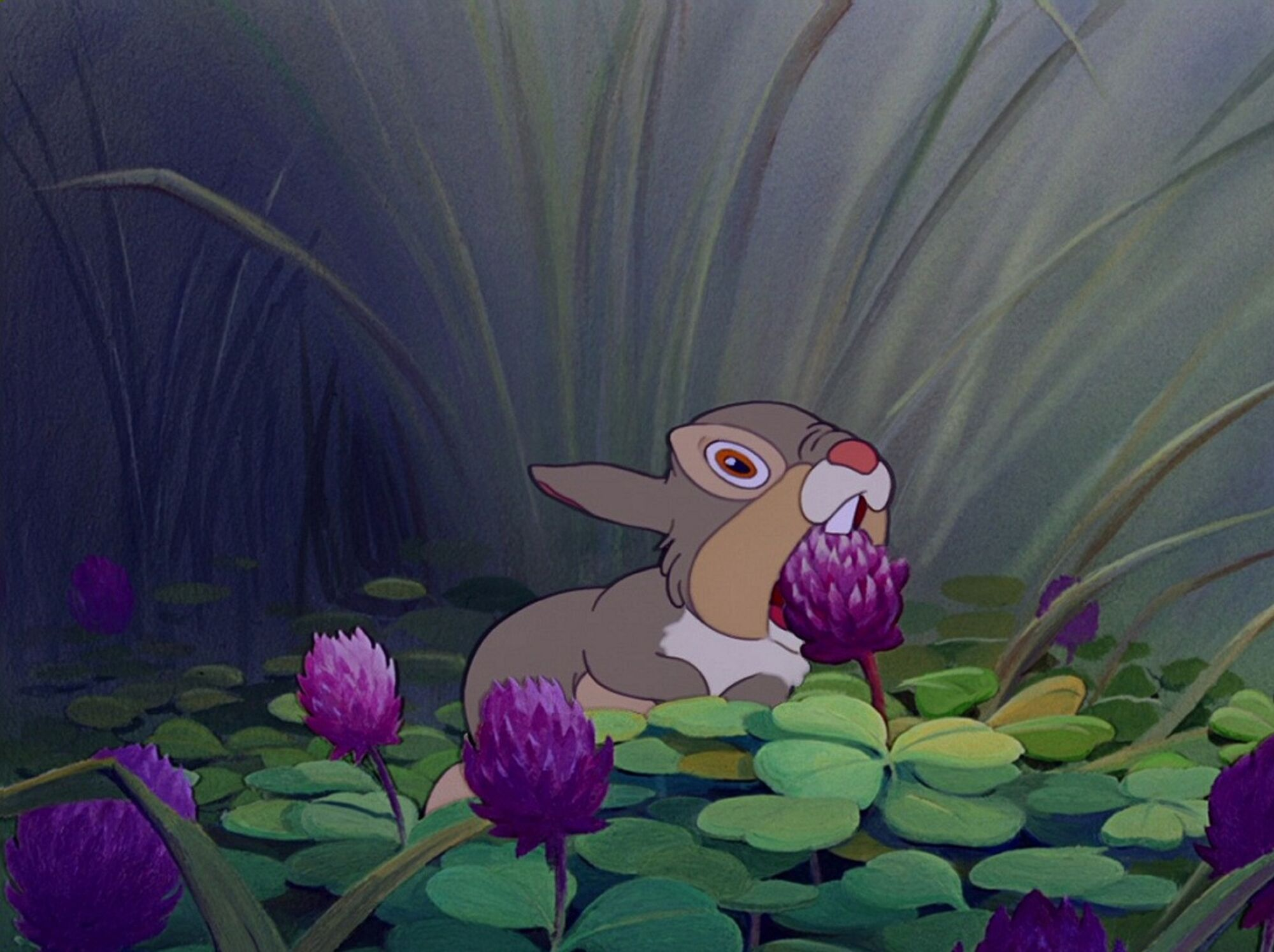 Uncategorized Pictures Of Thumper thumpergallery disney wiki fandom powered by wikia thumper about to eat blossom